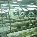 drying cabbage whole-set equipment-