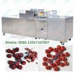 Fully Stainless Steel Dates/Jujube/Olives Pitter Price 0086-15937167907-