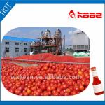 Turnkey project tomato paste production line-