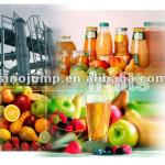 Fruit Processing line( different fruits need different machines)-
