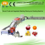 Electronic Fruit Weight Grading Machine-