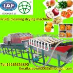 complete functions peach potato fruits cleaning drying and sorting machine-