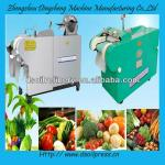 DS series automatic multifunctional vegetable cutting machine for industrial-