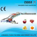 High Speed Automatic Fresh Fruit Washer-