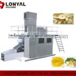 vegetable and fruit dry chips machines-