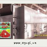 Agricultural Products Mesh-Belt Dryer-