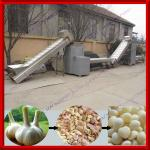 0086-13592420081 Automatic Dry Garlic Processing Line-