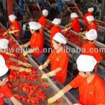High quality machines for tomato paste production line-