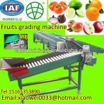 Fully automatic Pitaya and mango grading machine-
