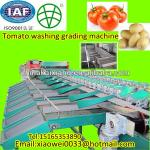 tomato potato cleaning drying and grading machine-