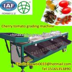 New style cherry tomato sorting machine-