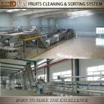Fruits and vegetable cleaning machine-