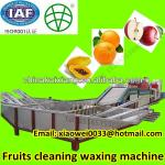 High quality fully automatic apple papaya cleaning and waxing machine-