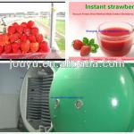 Healthy Freeze Dried Strawberry Powder Making Machines JYDFSB-014 Vacuum Freeze Dryer-