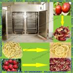 2013 Best Selling Good Quality Fruits Drying Machine for Sale-