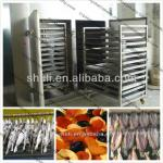 Stainess Steel dryer equipment for fish,vegetables,food and fruit 0086-13703825271-