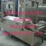 Multi-function automatic fryer-