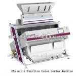 CCD Dehydrated Vegetables Fruit Color Sorter machine-