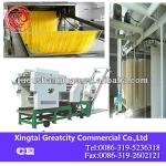 MT6-300 multifunctional color noodles making machine-