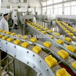 hot sale mini fried halal instant noodle production line-