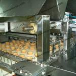 Full Automatic Custard Cake Production Line-