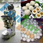 Automatic fish ball maker-