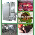 Zhengzhou Solon Stainless steel meat smoker/sausage smokehouse/fish smokehouse/smokehouse for meat