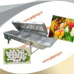 Cooking Machine|blanching machine|Meat ball Cooking Machine|Vegetable blanching machine