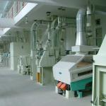 Complete Set Rice Milling Equipment-