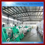 Hot Sale Rice/Grain Color Sorter Machine (0086 15981911701)-
