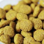 pet food processing line-
