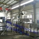 500kg/h Auomatic Pet Food Processing Line-