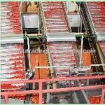 tomato paste processing machine-
