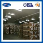 cold room / storage warehouse-
