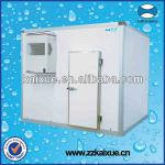 Small monoblock cold room for meat, vegetable, fruit and so on-