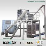 ICESTA tube ice making machine with ice packing machine-