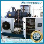 10Ton/Day Fresh water Flake Ice Machine for cold storage/cold room, ice machine manufacturer-