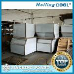 China Sea water ice maker 1500kg/day for fish processing-