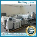 Marine flake ice machine 1000kg/day for vegetale fresh-