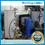 Marine flake ice machine 1ton/day for food processing-