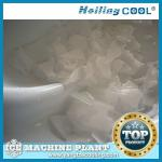 China Sea water ice maker 1500kg/day for beverage-