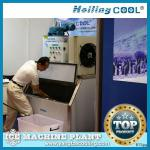 Hotel seafood Marine flake ice machine 1000kg/day-
