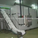 IQF Fluid Bed freezers-