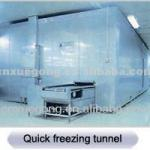 industrial blast freezers-