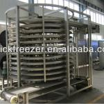 output 500 kg per hour IQF single spiral freezer-