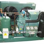 Industrial refrigeration equipment for cold room-