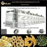 Mango strips mesh belt dryer for drying pineapple/apple slice/banana dices/Mango strips-