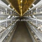 H type layer battery cages-