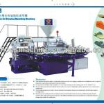 PVC Shoes Air Blowing Moulding Machine-